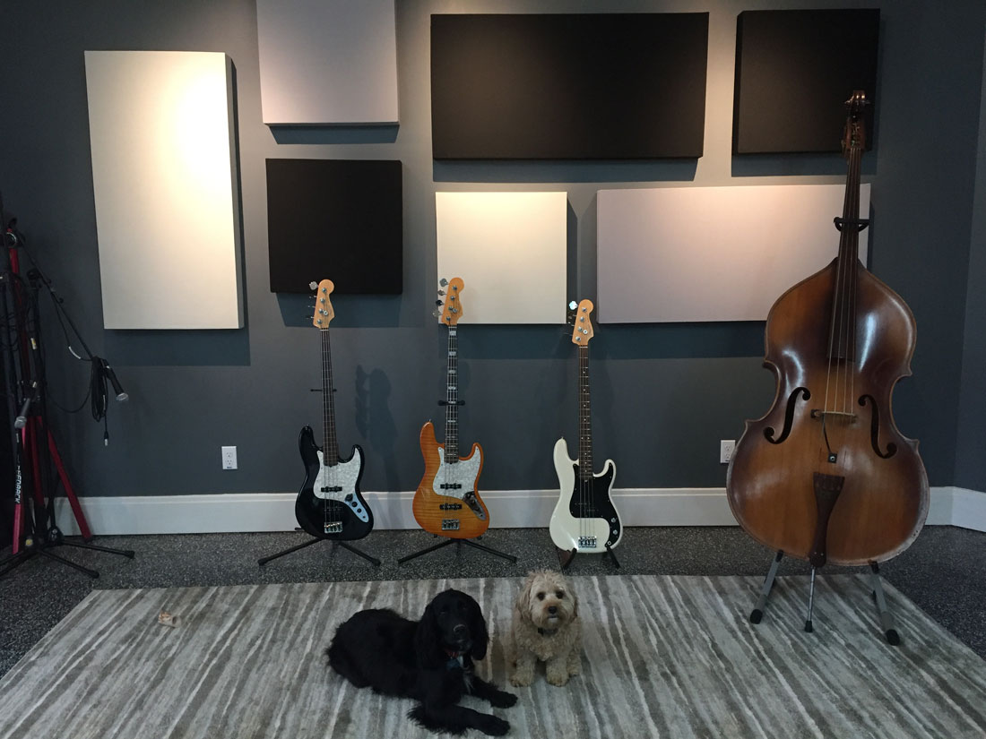 Schallabsober with dogs and basses